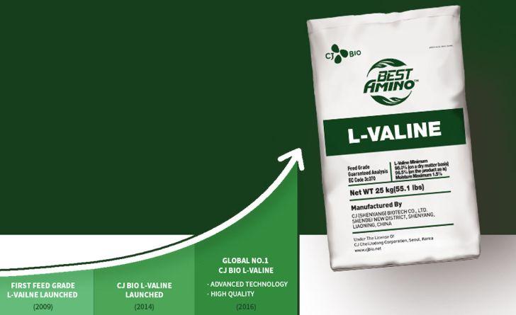 ال-والین، اسیدآمینه پروتئین ساز در طیور