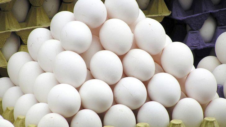 عوارض صادراتی تخم مرغ برای شهریور حذف شد