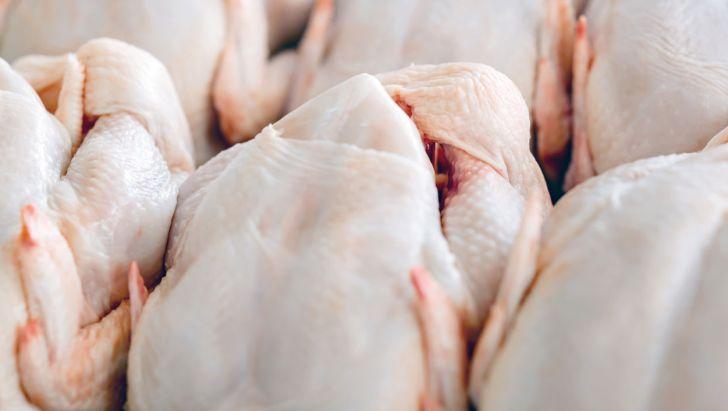 قیمت 30 هزار تومانی مرغ با حذف ارز 4200 تومانی