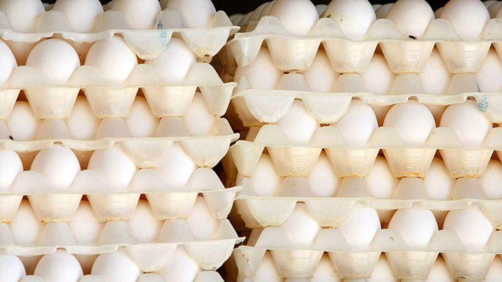 تولید کنندگان قیمت تخم مرغ را به صرفهنمیدانند