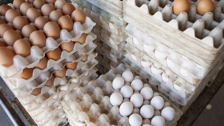 صدور مجوز صادرات تخم مرغ بر عهده وزارت جهاد کشاورزی خواهد بود.