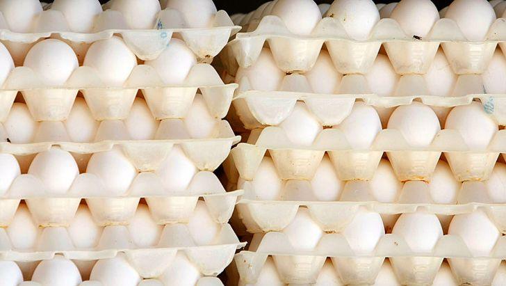 تصمیم گیری برای تولید تخم مرغ توسط ۴ نهاد دولتی