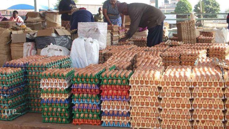 یکی از دستگاه های دولتی تعادل بازار تخم مرغ را از بین برد