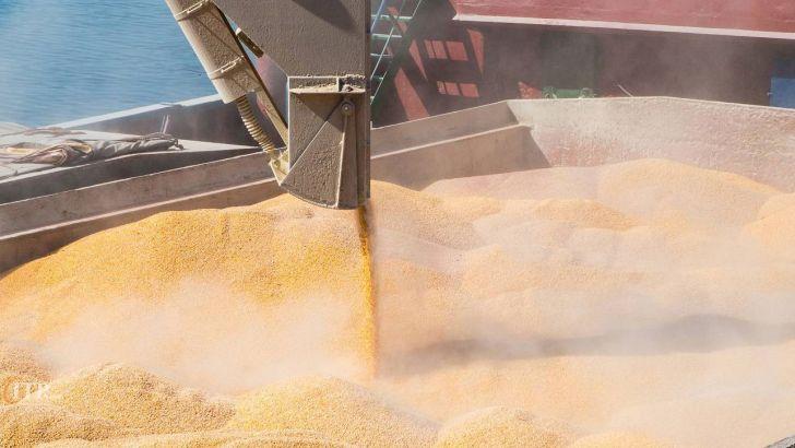 اختیار صادرات و واردات نهادههای دامی به وزارت جهاد کشاورزی واگذار شد