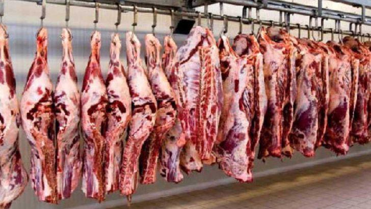 نامه شرکت پشتیبانی امور دام به سه نهاد حاکمیتی برای تامین ذخیره استراتژیک گوشت - سند