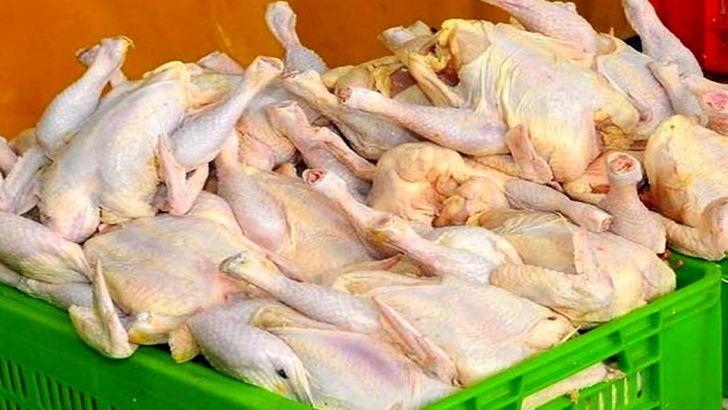 عرضه چند نرخی مرغ در بازار