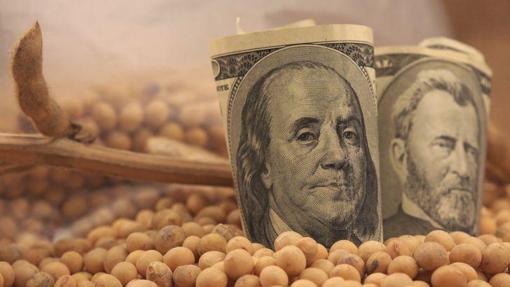 رانت موجود در توزیع نهادههای دامی، ارز دولتی را هدر داده است