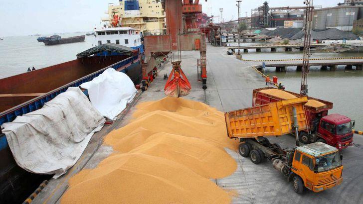 نهادههای دامی با تاخیر به دست تولیدکنندگان میرسد