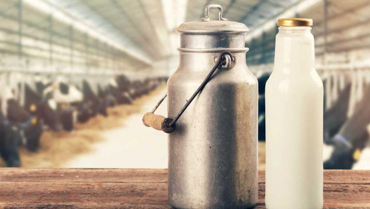 قیمت شیر خام ۵۵ درصد افزایش یافت+سند