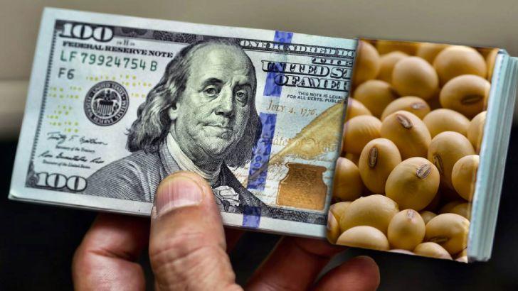 یک واردکننده خاص بیش از دو شرکت دولتی ارز گرفت