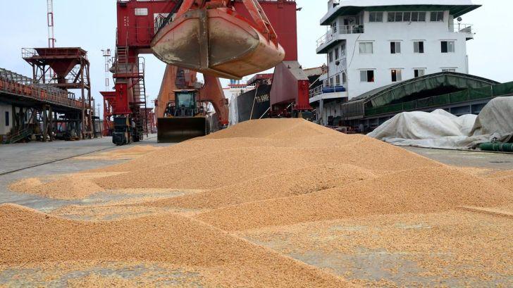 کیفیت پایین نهاده ها و ضرر مداوم تولیدکنندگان