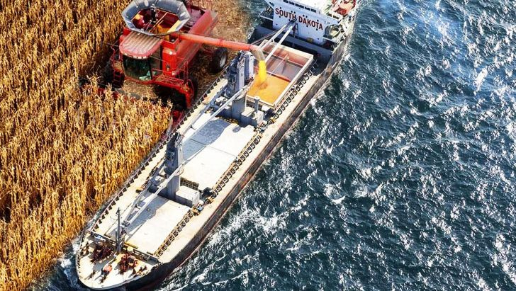 پهلو گیری ۹ فروند کشتی حامل نهاده های کشاورزی و دامی از ابتدای سال در بندرشهیدرجایی