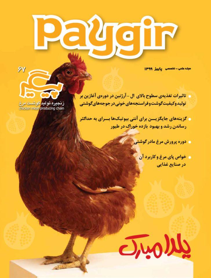دانلود مجله پیگیر - شماره 67