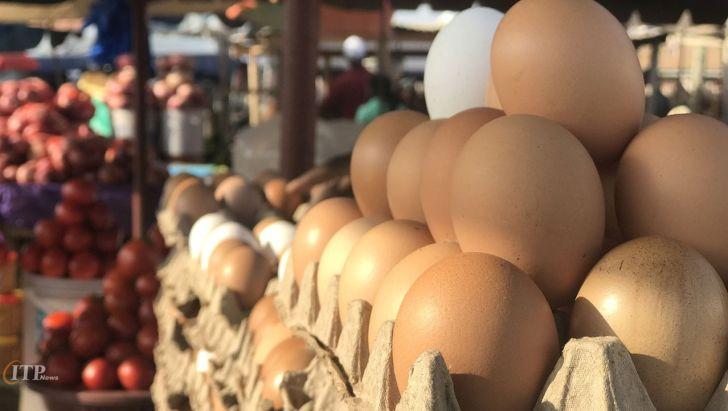 توقف عرضه فلهای تخم مرغ قطعی نیست