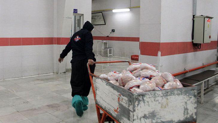 ثبات نرخ مرغ در بازار