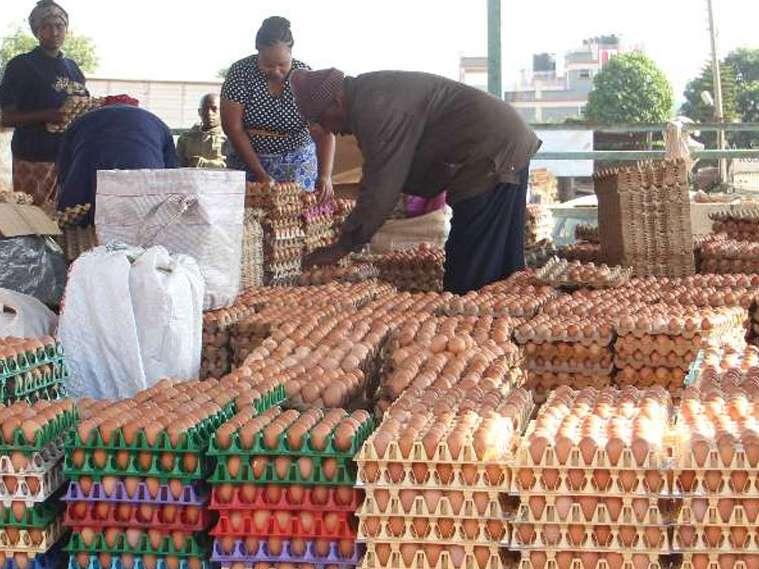 قاچاق تخم مرغ ایران به افغانستان و عراق