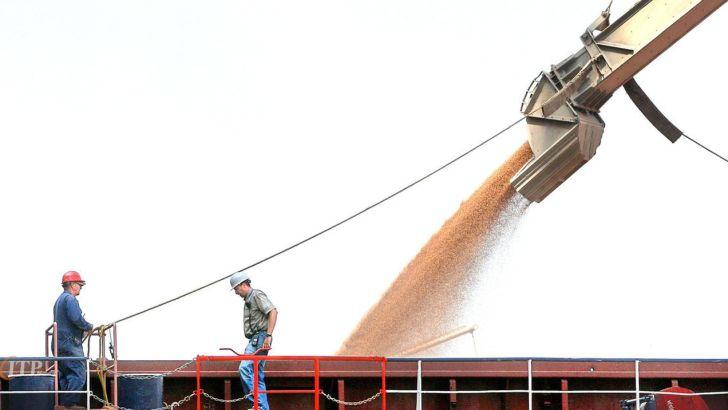 واردات نهاده های دام و طیور به صورت رسوبی، با تشویق دولت بود