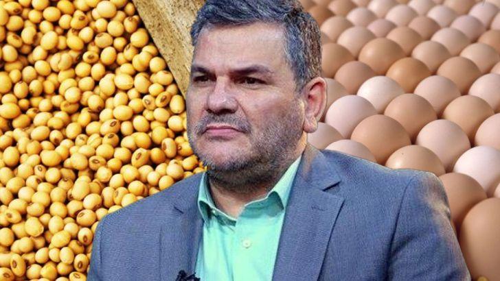 معاون وزیر جهاد: مشکل تامین نهادههای دامی کشور برطرف شده است