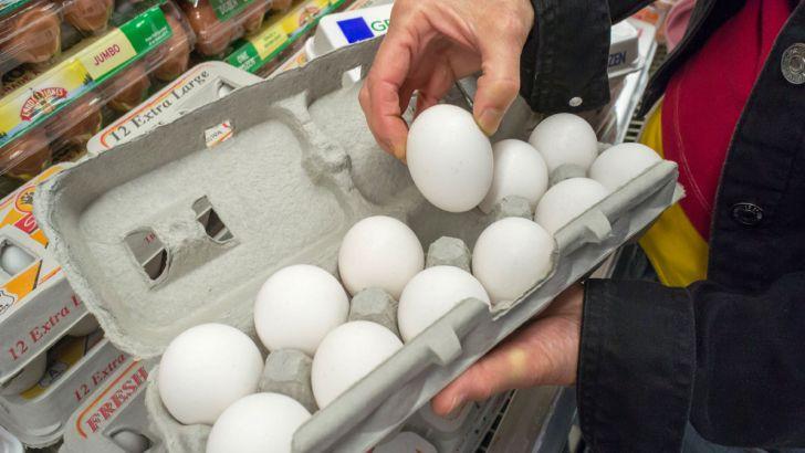 قیمت مورد قبول هر عدد تخم مرغ، ۱۲۰۰ تومان است