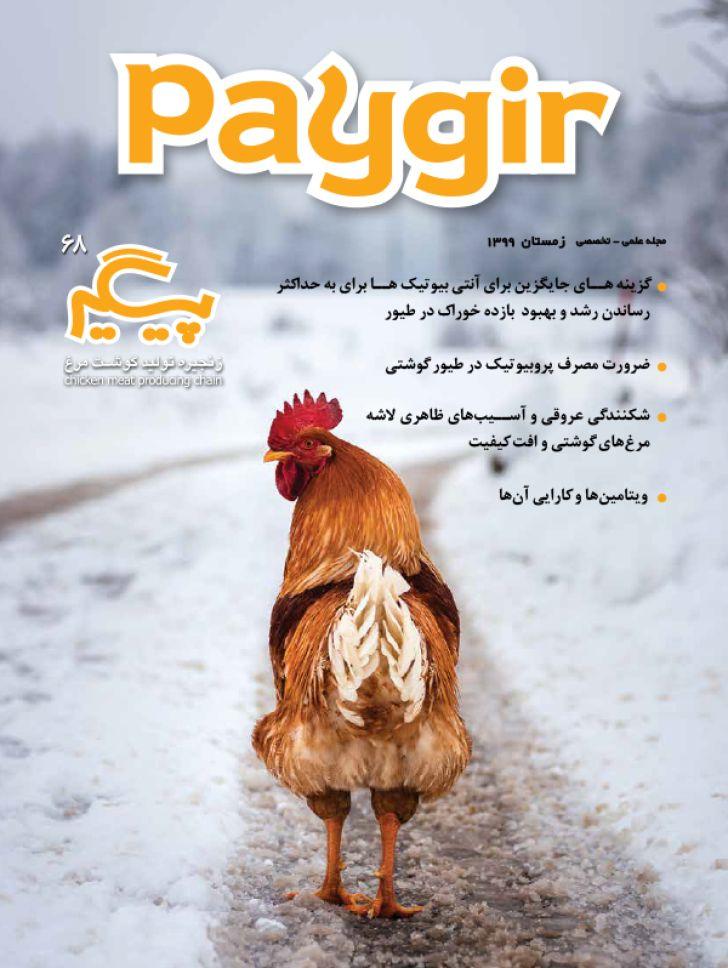 دانلود مجله پیگیر - شماره 68