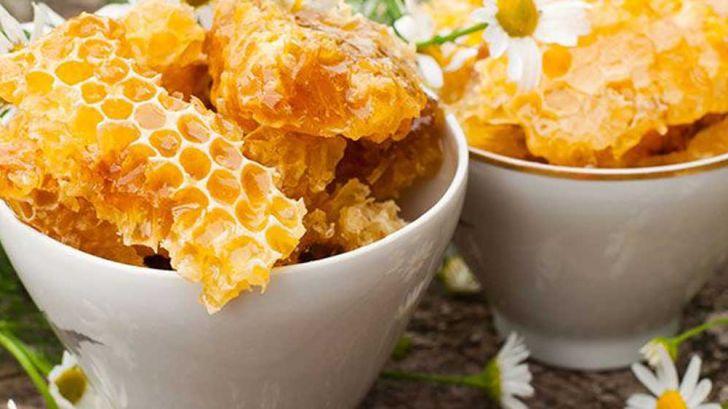 راه اندازی بزرگترین واحد فرآوری موم زنبور عسل در کاشمر