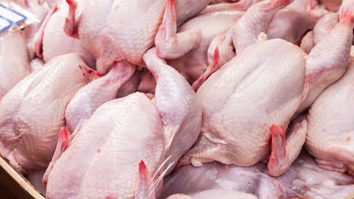 واردات مرغ قیمت آن را تثبیت نخواهد کرد