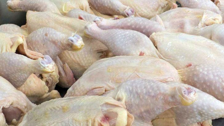 برزیل و ترکیه اولویت واردات مرغ بر ایران