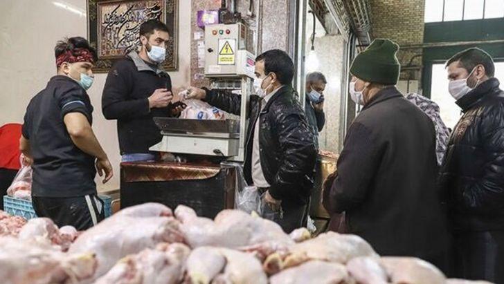 ورود مرغ به تهران در روزهای آینده افزایش می یابد