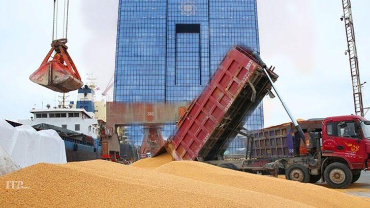 نقش قابل توجه بانک مرکزی در آشفتگی بازار مرغ