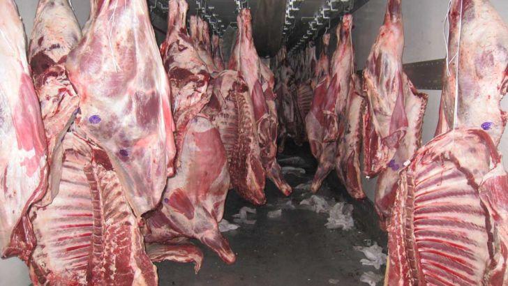 ضرورت بازاریابی برای گوشت قرمز و تکمیل زنجیره پشم