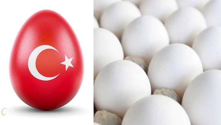 دامپینگ ترکیه علیه بازارهای تخم مرغ ایران
