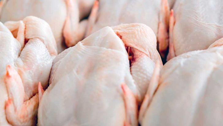 پیشبینی افزایش قیمت مرغ