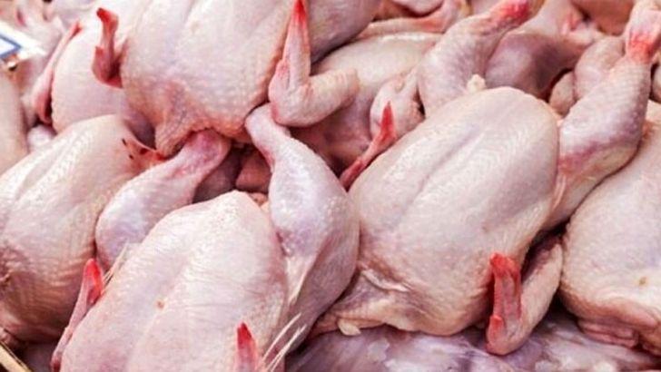 خلا ۱۰ روزه جوجهریزی باعث کمبود مرغ در آذربایجانغربی شد