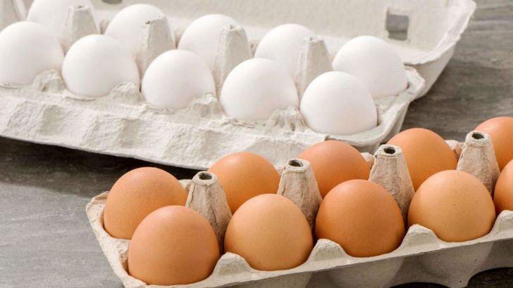 روند نزولی قیمت تخم مرغ ادامه دارد