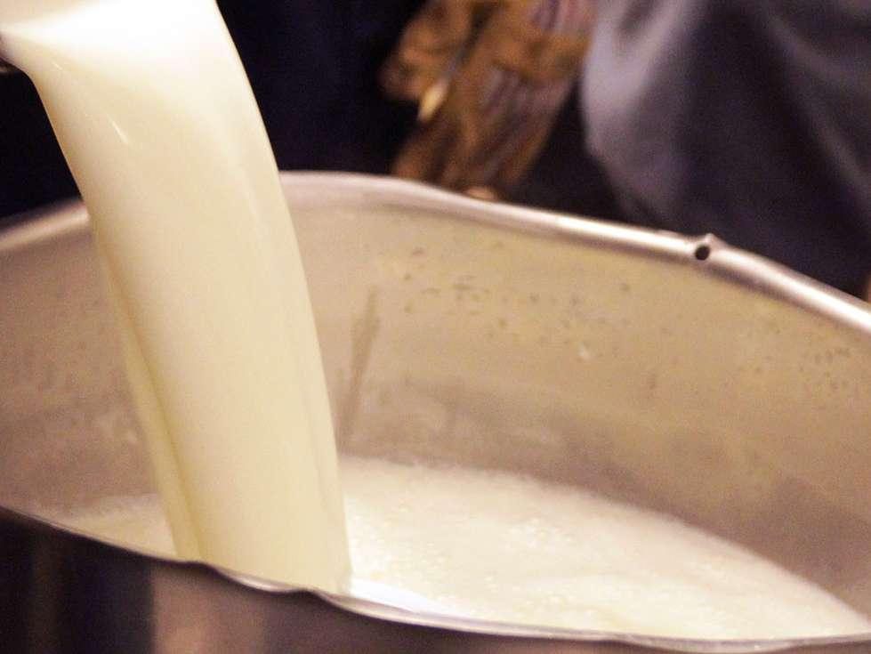 انتقاد از تاخیر دولت در تعیین نرخ شیرخام