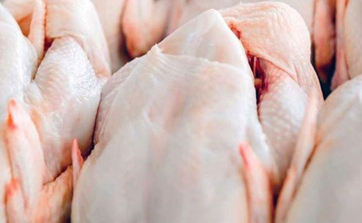 بر تامین و توزیع مرغ نظارت هوشمند اعمال میشود
