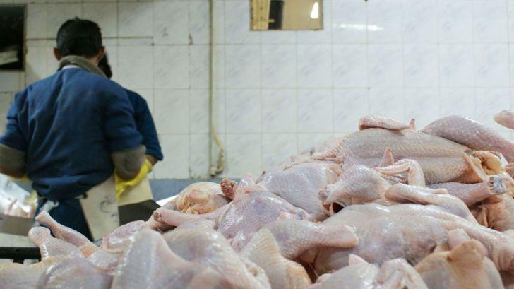 لزوم مدیریت سیستمی توزیع مرغ از کشتارگاه تا محل عرضه