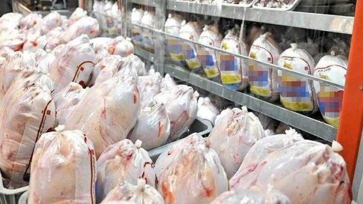 تشدید نظارت بر توزیع و عرضه مرغ در گیلان با استفاده کد رهگیری