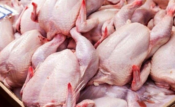 استان اصفهان روزانه نیازمند ۶۰۰ تن گوشت مرغ است