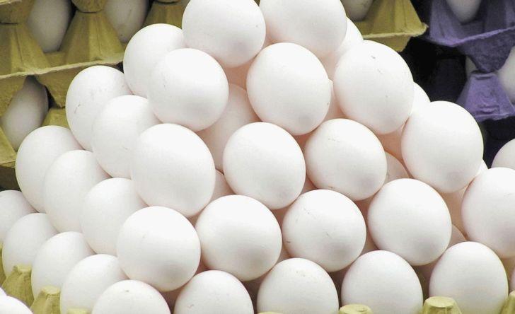 قیمت واقعی هر شانه تخم مرغ چقدر است؟
