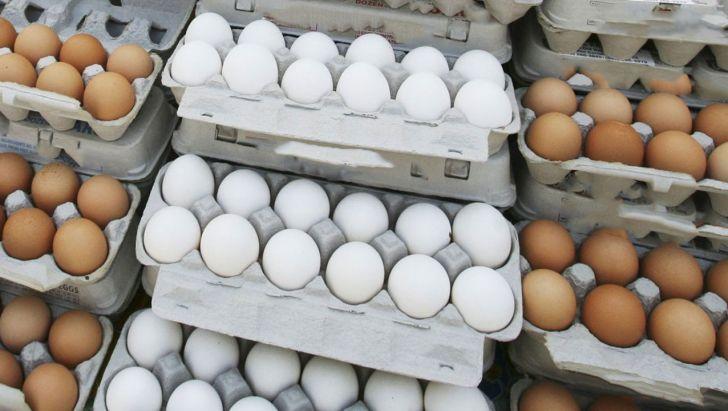 ۱۰ هزار تن تخم مرغ وارد میشود