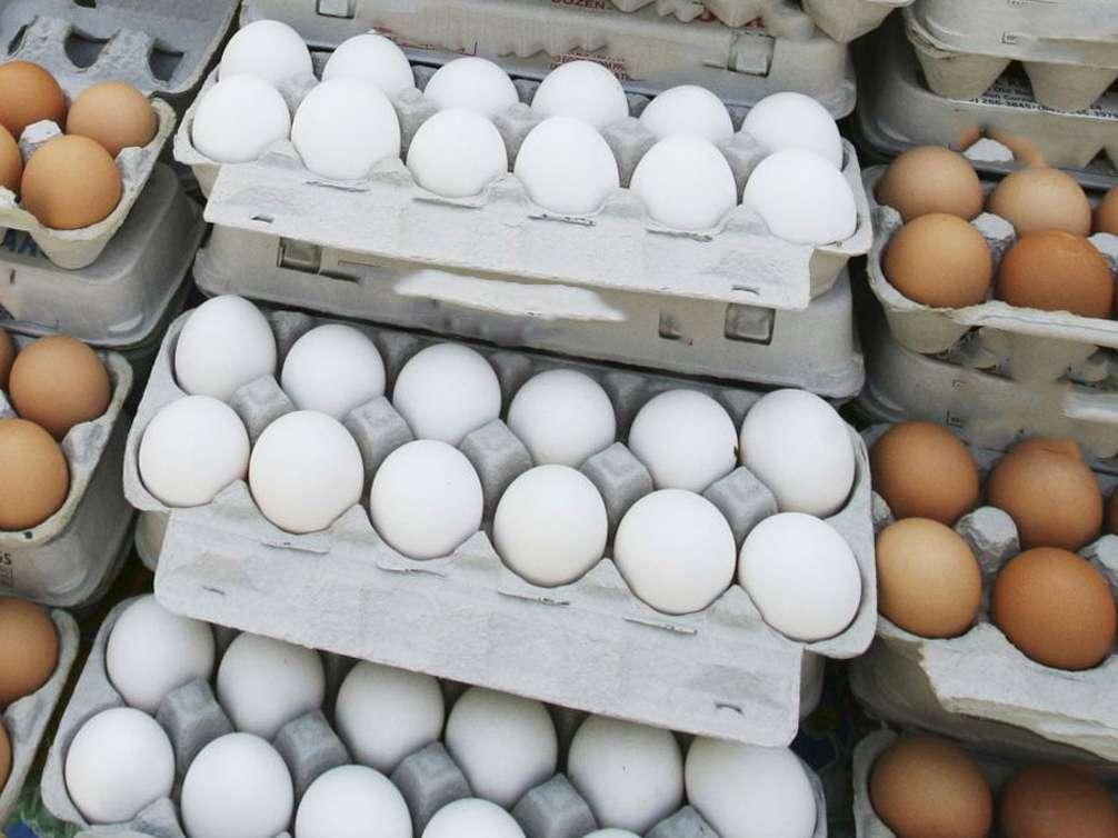 قیمت تخم مرغ متعادل می شود