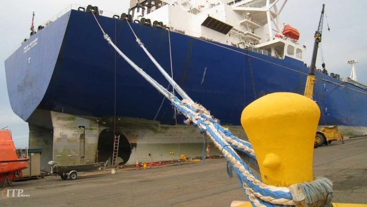 پهلوگیری ۵ فروند کشتی حامل کالاهای اساسی و نهادهای دامی در بندر شهید رجایی