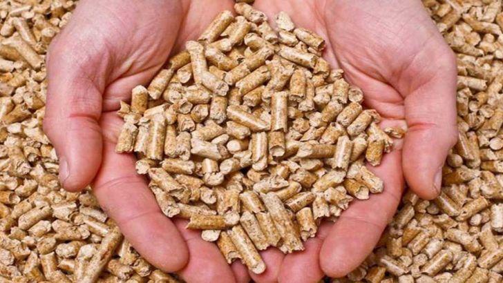 تسهیل دسترسی تولیدکنندگان خوراک دام و طیور به نهادهها