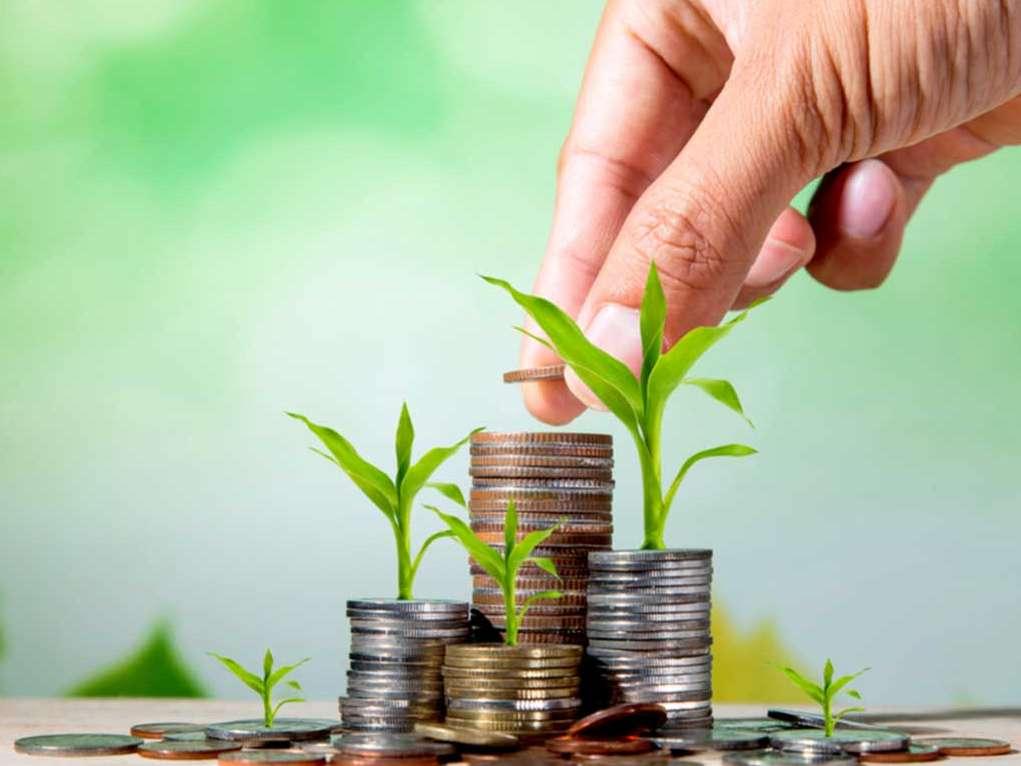 ۵۰ میلیون تومان تسهیلات برای خرید نهادههای دامی پرداخت می شود