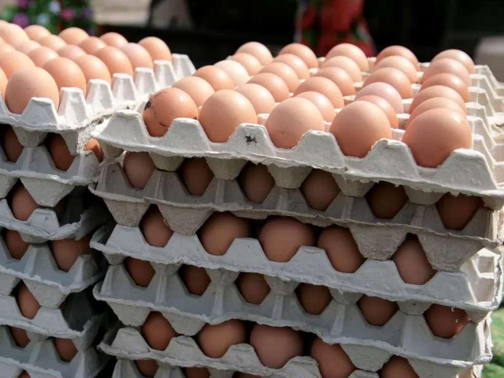 مرغ و تخم مرغ به اندازه کافی وارد کشور شده است