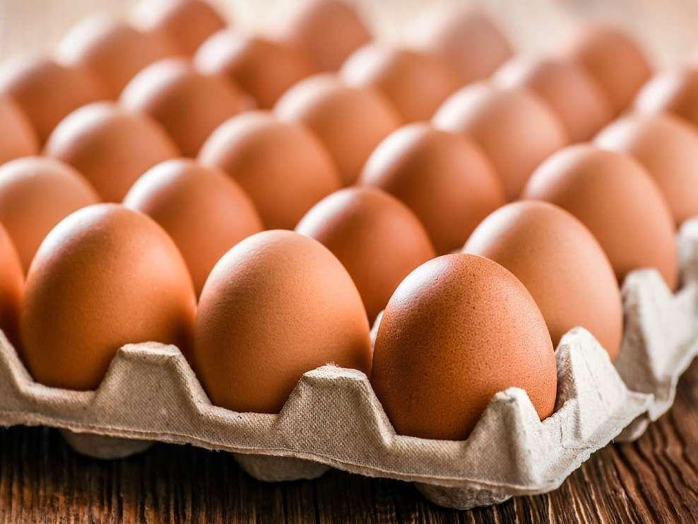 صدور مجوز واردات تخم مرغ برای تامین ذخایر پشتیبانی