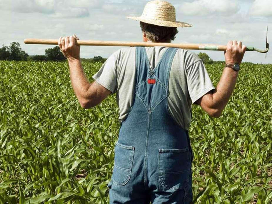 چهره تجارت کشاورزی در حال تغییر است