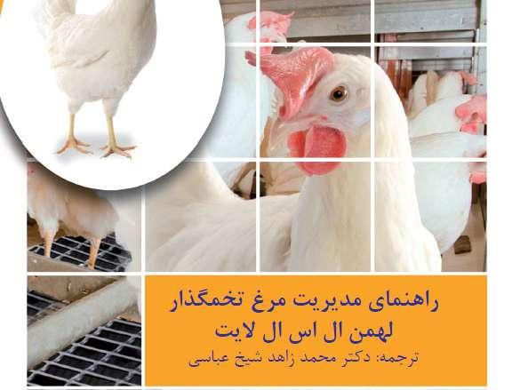 راهنمای مدیریت مرغ تخمگذار لهمن ال اس ال لایت