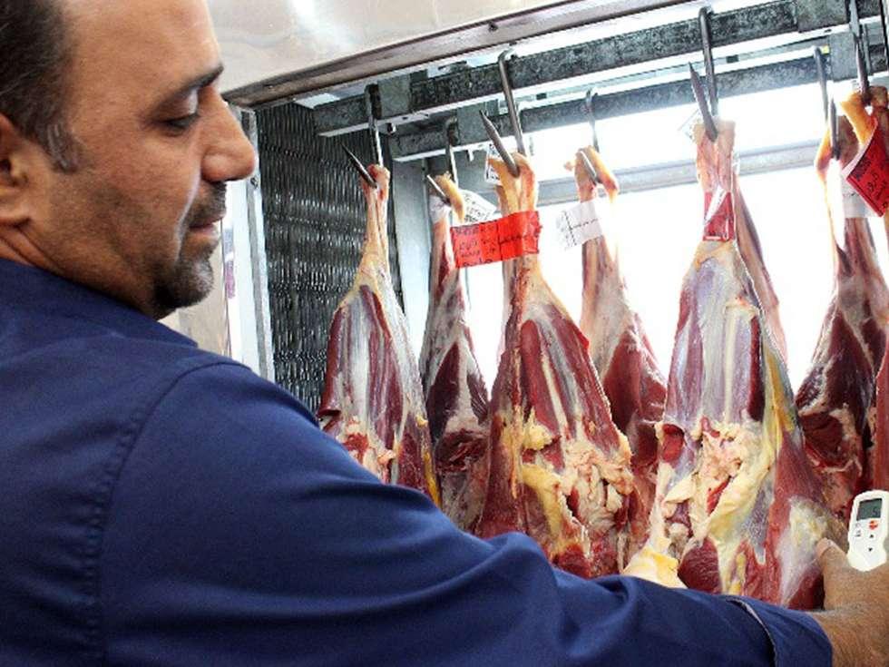 دام ارزان شده است/ ناظران با گرانی گوشت برخورد کنند